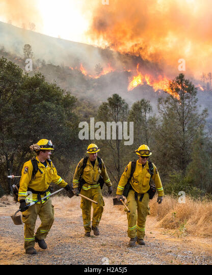 Moccasin, California, USA. 26th Sep, 2016. September 26, 2016.CalFire firefighters from Murphys and Arnold, California, - Stock Image
