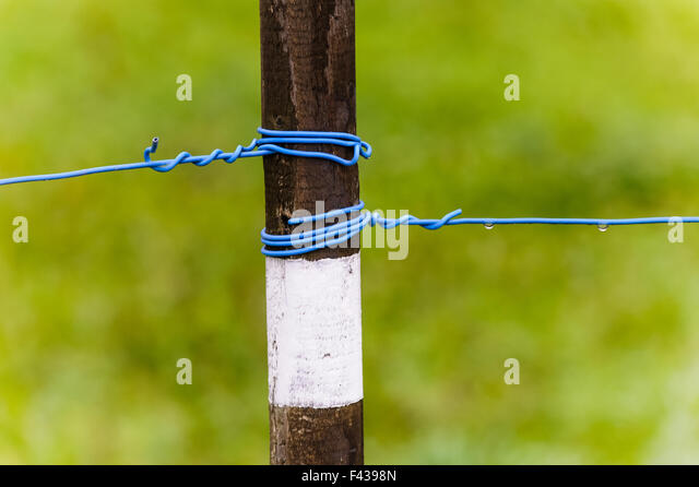 Peg with a tense wire - Stock Image
