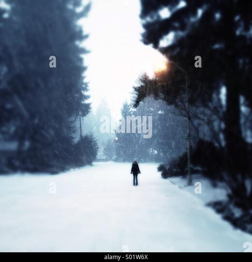 alone on a snowy street - Stock Image