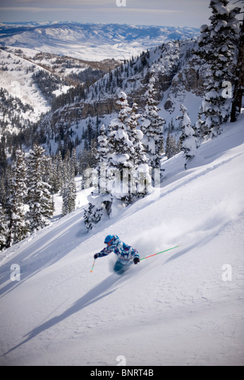 Man skiing deep powder, Alta, Utah. - Stock Image