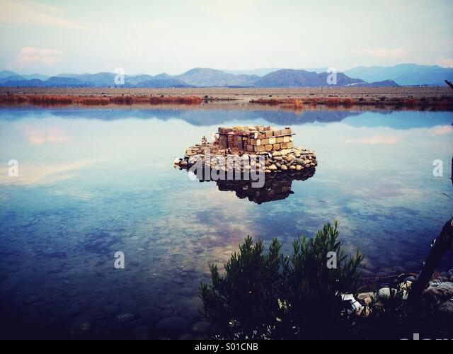 Duck hideout - Stock Image
