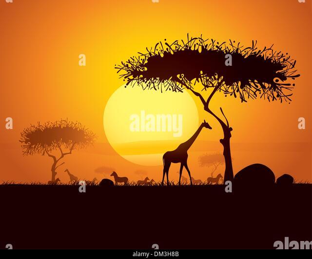 tranquil sunset scene in africa - Stock Image