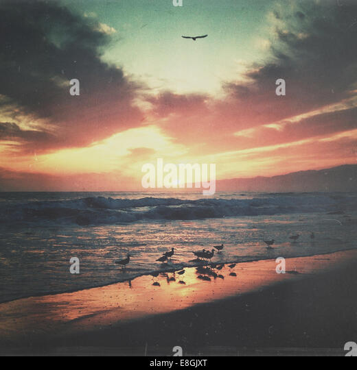 USA, California, Los Angeles County, Sunset over Santa Monica - Stock-Bilder