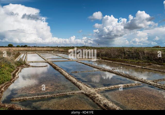 Sault marches,  Loix en Re, Ile de Re, Nouvelle-Aquitaine, french westcoast, france, - Stock Image