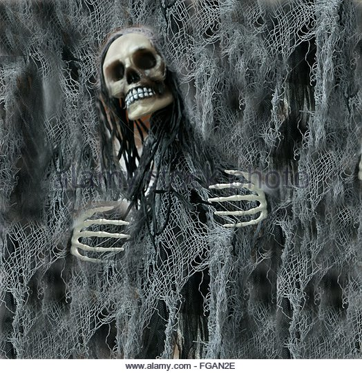 Digital Composite Image Of Human Skull And Net - Stock Image