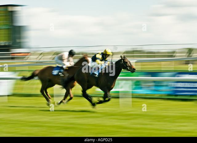 Horse racing, England, UK - Stock Image
