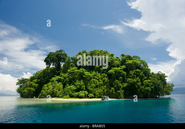 Restorf Island, Papua New Guinea. Indo-pacific - Stock Image