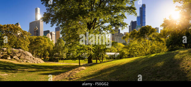 Afternoon panorama view of Central Park in Summer with Manhattan Skyscrapers, New York City - Stock Image