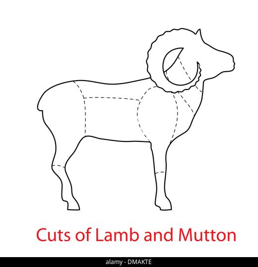 butcher diagram stock photos  u0026 butcher diagram stock images