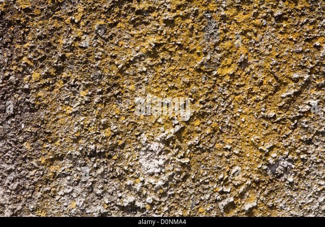 old wall background - Stock Image