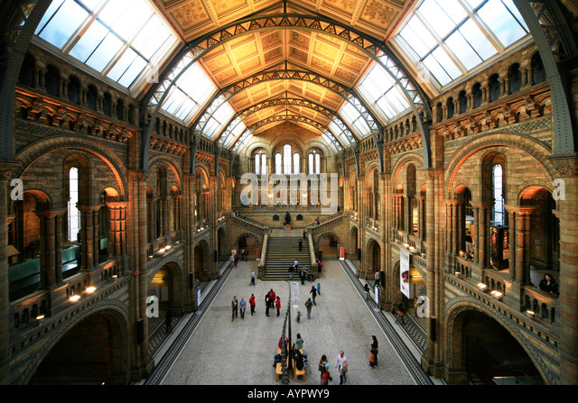 Interior of British Natural History Museum, London - Stock Image