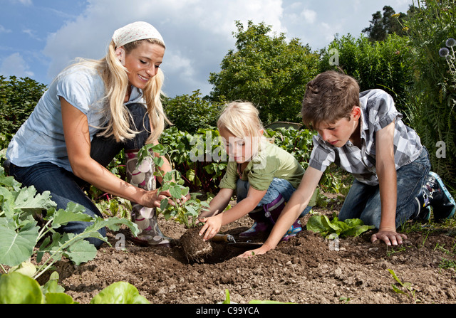 Germany, Bavaria, Altenthann, Woman and children gardening together in garden - Stock Image