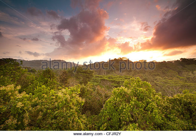 Sunrise in Soberania national park, Republic of Panama. - Stock Image