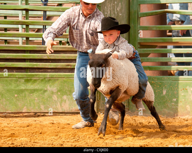 Young cowboy riding sheep during Mutton Busting event Rodeo, Bruneau, Idaho. USA - Stock Image