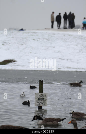 Birds enjoy the serene atmosphere in Alexandra Lake. Credit David Mbiyu/Alamy Live News - Stock Image