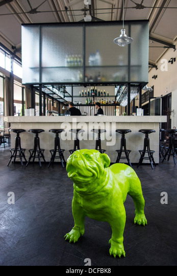 Dog fish stock photos dog fish stock images alamy for Flanders fish market