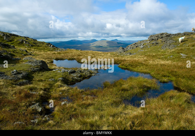 The Rhinog Hills from Aran Benllyn in the Aran mountains, near Bala, Snowdonia, North Wales, UK - Stock Image