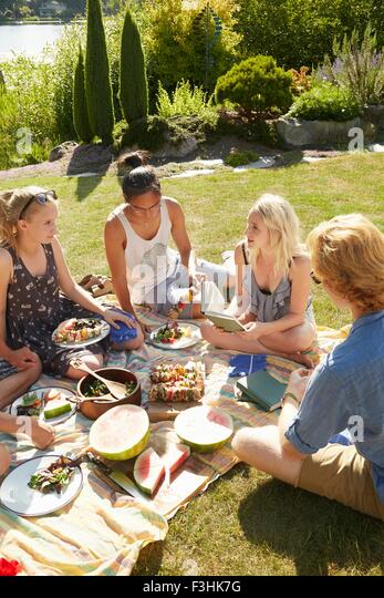 Friends at picnic party, lake in background, Seattle, Washington, USA - Stock Image