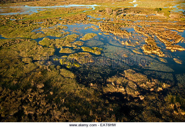 An aerial view of the Okavango Delta at the Moremi Game Reserve. - Stock Image