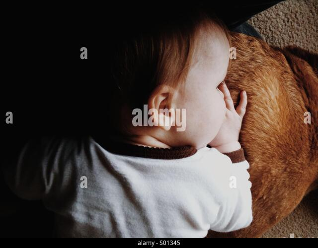 A child rests her head on a dogs back. - Stock Image