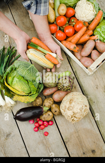 A lot of different vegetables. - Stock Image