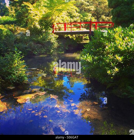 Japanese Garden and bridge, autumn, Kubota Gardens, Seattle - Stock Image