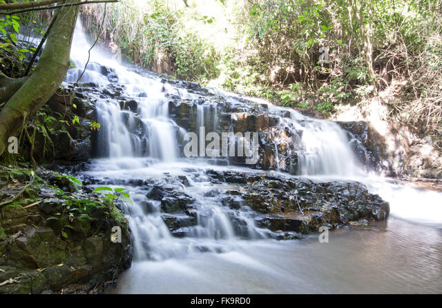 Waterfall in old coffee farm from the beginning of the twentieth century - Stock Image