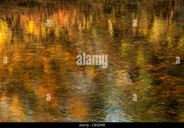 Abstract of beautiful autumn color reflected in the River Skirfare in Arncliffe, Littondale, Yorkshire, England - Stock Image
