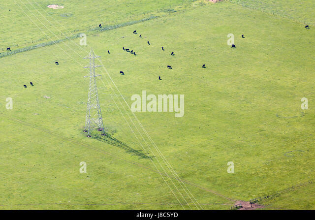 Aerial view of a green farmland. - Stock Image
