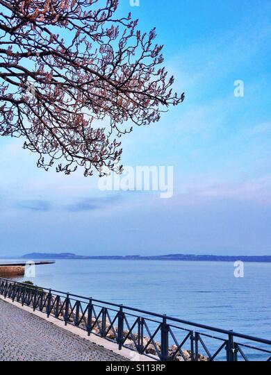 Lake view in spring season - Stock Image