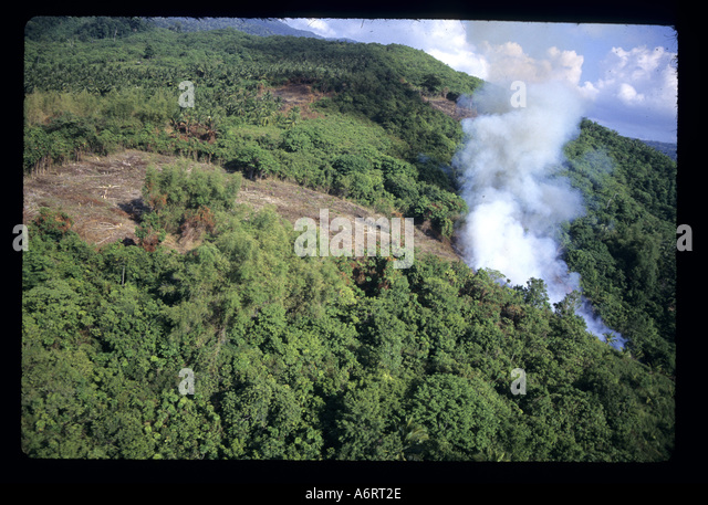 Slash and Burn Destruction in the Philippines - Stock Image