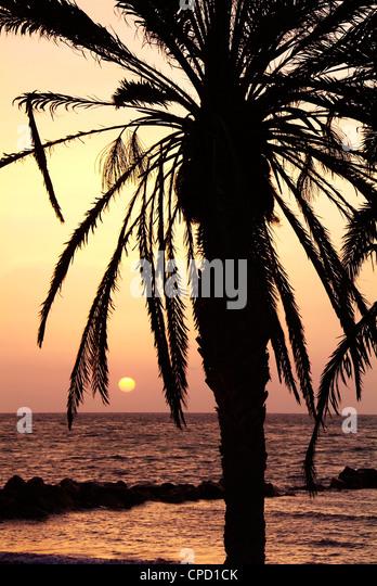 Sunrise near Sidi Slim, Island of Jerba, Tunisia, North Africa, Africa - Stock Image