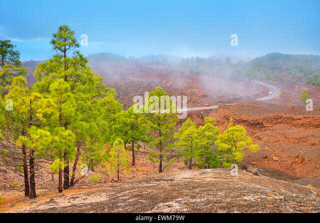 Volcanic landscape, Teide National Park, Tenerife, Canary Islands, Spain - Stock-Bilder