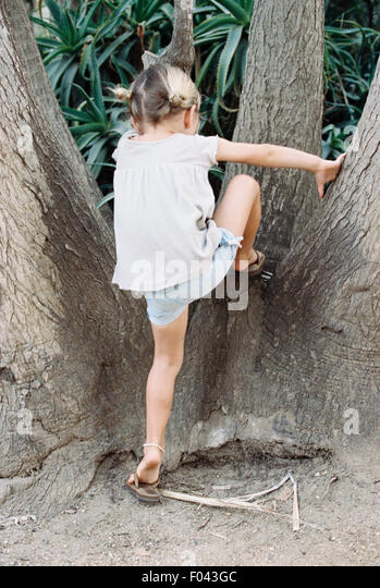 A young blond haired girl climbing a tree. - Stock Image