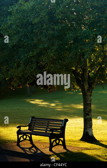 Dawn sunlight backlighting a park bench on Plymouth Hoe in Summer. - Stock Image