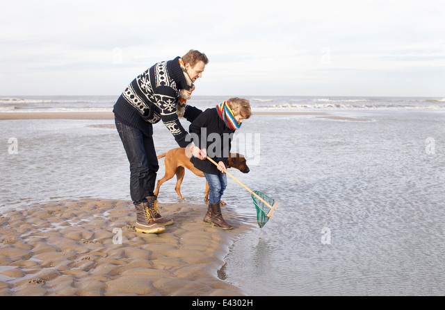 Mid adult man and son fishing on beach, Bloemendaal aan Zee, Netherlands - Stock Image