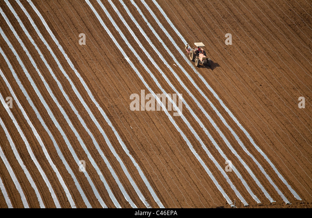Aerial photograph of the agriculture fields of the Dan Metropolis - Stock Image