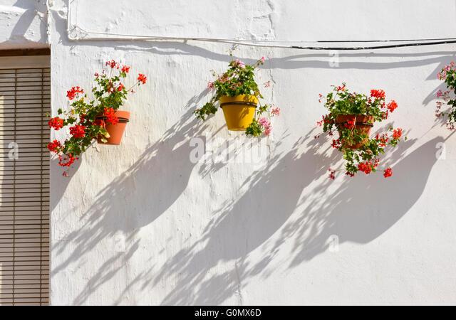 Andalucia Spain Flowerpots sunshine flowers - Stock Image