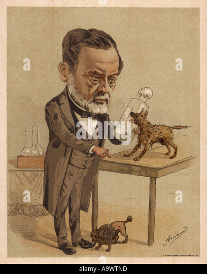 a biography of louis pasteur the french chemist Discover unexpected relationships between famous figures when you explore our famous chemists  scientist louis pasteur  humphry davy was a british chemist.