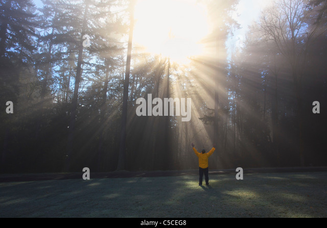 A Person Raises Their Arms To The Sun Shining Through Morning Fog And Trees; Happy Valley, Oregon, United States - Stock Image
