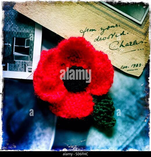 A red poppy amidst old photos - Stock-Bilder