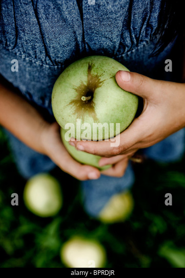 A young girl holds green apples in an apple orchard in Calhoun County, Illinois on September 28, 2008. - Stock Image