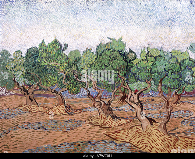 fine arts, Gogh, Vincent van (1853 - 1890), olive trees, pink sky, painting, Saint Remy 1889, oil on canvas, 730 - Stock Image