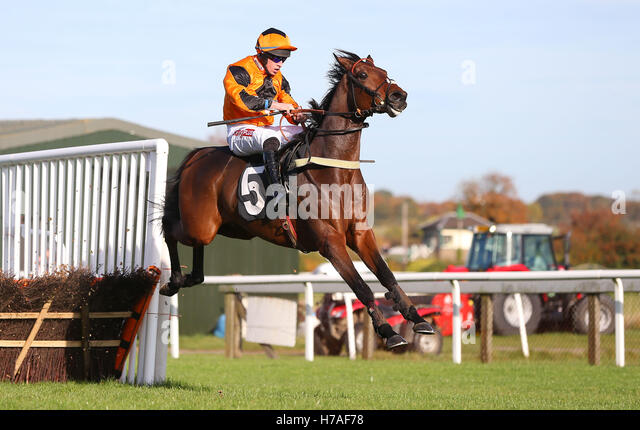 Plumpton, UK. 31st October 2016. Jack Bear (Orange Cap) ridden by Gavin Sheehan seen during the Breeders« Cup - Stock Image