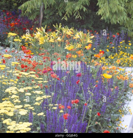 Chelsea 2004 Stock Photos & Chelsea 2004 Stock Images - Alamy