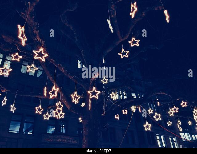 Stars decorations on tree branches - Stock Image