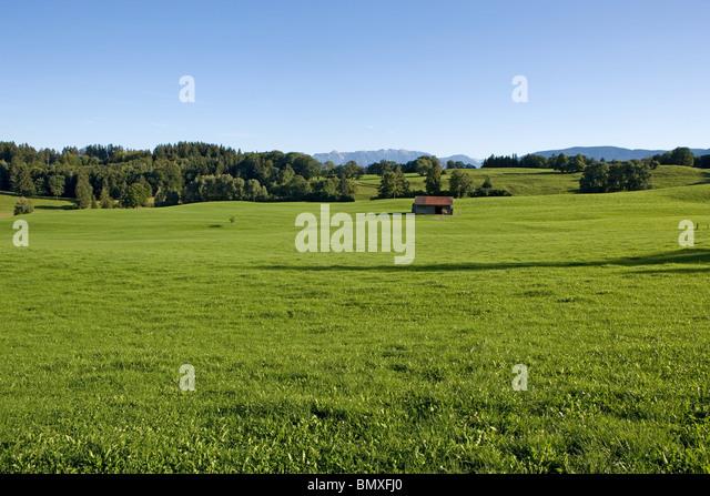 Meadows in bavaria - Stock-Bilder