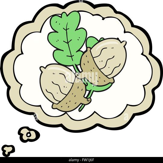 freehand drawn thought bubble cartoon acorns - Stock Image