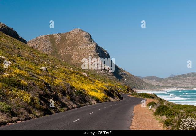 Empty road to Cape of Good Hope, Cape Town, South Africa - Stock Image