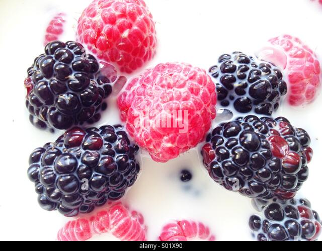 Berries in Milk - Stock Image
